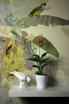 Tropical bird and plant wallpaper. Learn more about creative wallpaper here: http://prolabdigital.com/products-services/fine-art-digital-prints/wall-murals-wallpapers.html