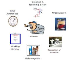 Executive function. The skills needed to succeed in life and school.