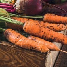 Brico Depot - It's good to be home Carrots, Solar, Vegetables, Food, Plant, Essen, Carrot, Vegetable Recipes, Meals