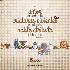 El amor por todas las criaturas vivientes es el más noble atributo del hombre #frases #EnPositivo