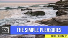 In The Field: The Simple Pleasures #212