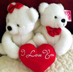 I Love You Pictures, Love You Gif, Beautiful Love Pictures, Good Morning Love Messages, Cute Good Morning, White Teddy Bear, Teddy Bears, Hug Pictures, Romantic Good Night
