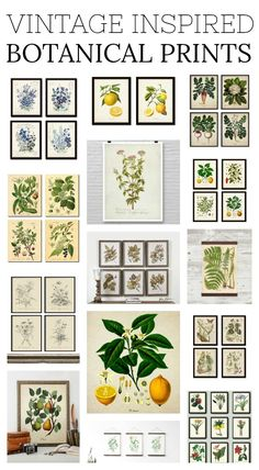 Vintage Home Vintage Inspired Botanical Prints. - Vintage home decor and inspired prints are a trend that I LOVE. Check out some of my favorite vintage inspired botanical prints straight from Etsy! Botanical Kitchen, Botanical Decor, Vintage Botanical Prints, Botanical Interior, Farmhouse Style Decorating, Farmhouse Decor, Farmhouse Artwork, Vintage Farmhouse, Decoupage
