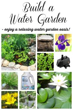 Design and Construct a Water Garden! Build a water garden feature in your back yard and enjoy the RELAXING sound of water and beauty of pond plants! Design and construct one yourself with these items to create YOUR OWN private water garden oasis! #spon