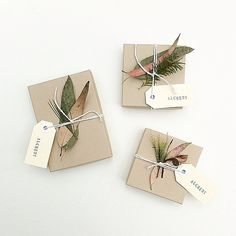 Shop packaging using native Australian flora by Alchemy. thealchemystore.bigcartel.com
