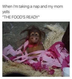 37 Hilarious Memes for Anyone Who Just Wants to Eat Everything -