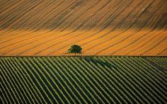 Earth From Above - France, Yann Arthus-Bertrand