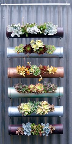 Vertical gardens are