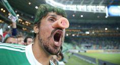 Palmeiras Allianz 14 (Foto: Ari Ferreira)