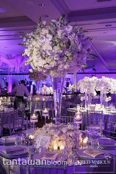 Colored lighting enhances the beauty of a white wedding ~ Tantawan Bloom