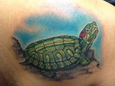 Red ear slider turtle tattoo my shoulder Small Turtle Tattoo, Turtle Tattoo Designs, Turtle Tattoos, Red Ear Turtle, Turtle Love, Red Eared Slider Turtle, Small Turtles, Jordan Red, Sliders