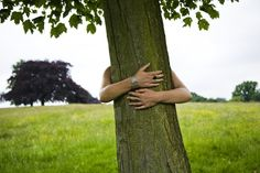 Do You Know the Right Way to Hug a Tree?: Do You Know How to Hug a Tree?