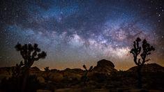 Star Tours, Mojave Desert, Light Pollution, Stars At Night, Star Sky, Dark Skies, Iguazu Falls, Nature Images, Star Wallpaper
