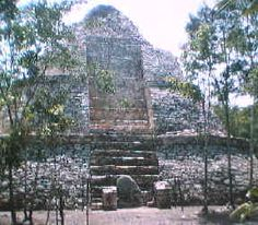 pyramid at Coba, Mexico.  We were told that this is the tallest pyramid in the Mayan world. Yup, we climbed it. Then I threw up. (so sick that day, but refused to sit out!)