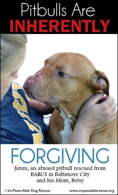 Great cause, great rescue--ALL PROCEEDS (minus the costs of the t-shirts, decals and mailing) will go to help feed, vet, and provide whatever else is needed by our rescue pups!  If you'd like to purchase one, please go to: http://www.charlietotherescue.org/forgiveness