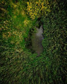 Mossy Peat Bogs in Počernický rybník... ...Working on a project Praha neznáma 🇨🇿 If you think you have seen my first vlog, go checkout my youtube!!! #dolnipocernice #pocernickyrybnik #vidlák #čeněk #praha #prague #praguestagram #czechrepublic #nicepic #picoftheday #peatbog #peatbogs #nature #samray #moss #water #drone #dronestagram