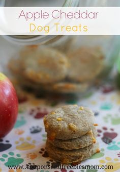 Easy Homemade Apple Cheddar Dog Biscuits Recipe! Your dogs will go WILD for these homemade dog treats, especially with our special SECRET ingredient! Stop wasting money on dog treats & make these Simple Dog Biscuits at home! Check it out here!
