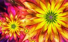 Abstract multicolor flowers fractals (2560x1600, multicolor, flowers, fractals)  via www.allwallpaper.in
