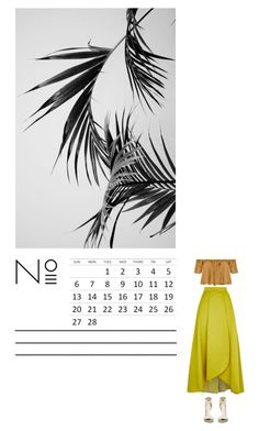 """CANE"" by missmelodies ❤ liked on Polyvore featuring Pinko, Tejido, Summer, tropical, minimal, design and minimalism"