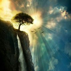 in my dreams: Photo Beautiful World, Beautiful Places, Padre Celestial, Celtic Tree, Gods Creation, Belleza Natural, Mother Nature, Amazing, Sunrise