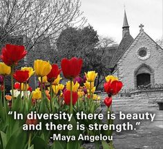 """In diversity there is beauty and there is strength."" -Maya Angelou"