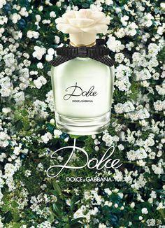 Dolce by Dolce & Gabbana Fragrance