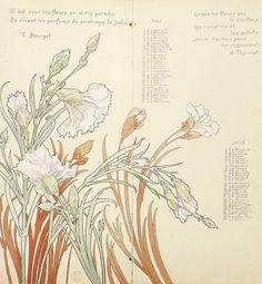 Henri Privat-Livemont tulip - Google Search