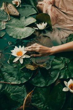 A fun image sharing community. Explore amazing art and photography and share your own visual inspiration! Kreative Portraits, Dark Green Aesthetic, Spring Aesthetic, Foto Fashion, Slytherin Aesthetic, Motif Floral, Aesthetic Pictures, Aesthetic Wallpapers, Art Photography