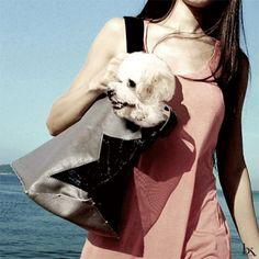 Designer Dog Carrier. BK Atelier Rox Dog Tote