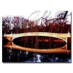 Trademark Fine Art Ariane Moshayedi 'The Bridge' Canvas Art