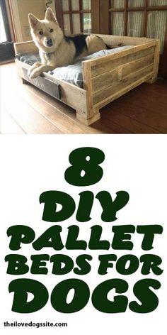 8 DIY Pallet Beds For Dogs! @jjking321