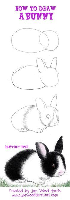A short and simple tutorial on How to Draw a Bunny…colored pencils Hippity Ho… The post A short and simple tutorial on How to Draw a Bunny…colored pencils Hippity Ho appeared first on Best Pins for Yours - Drawing Ideas Drawing Lessons, Drawing Techniques, Drawing Tips, Drawing Sketches, Art Lessons, Painting & Drawing, Drawing Ideas, Sketching, Bunny Painting
