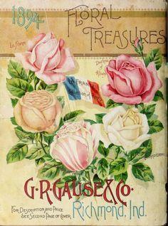 Seed Illustration, Vegetable Illustration, Botanical Illustration, Vintage Seed Packets, Seed Packaging, Vintage Gardening, Seed Catalogs, Vintage Metal Signs, Garden Images
