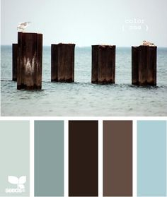 Dark brown wood, white trim, & blue on the right for bathroom.