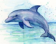 Dolphin Art Dolphin Watercolor Painting Dolphin Print - Dolphin Watercolor Art Print Perfect For Nursery Dolphin Painting Dolphin Drawing Sea Creatures Art Giclee Art Print Of My Original Watercolor Painting Of A Beautiful Dolphin High Quality Arch Dolphin Drawing, Dolphin Painting, Dolphin Art, Sea Dolphin, Ocean Drawing, Art Watercolor, Watercolor Animals, Creature Drawings, Watercolor Art