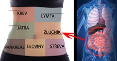 There are many natural ways that can detoxify your body and strengthen your immune system. Here's how to detoxify your body and the whole immune system. Herbal Remedies, Natural Remedies, Heavy Metal Detox, Detoxify Your Body, Burn Out, Lose Weight, Weight Loss, Autoimmune Disease, Immune System