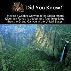 Copper canyon, Mexico Amazing Places On Earth, Beautiful Places To Travel, Places Around The World, Cool Places To Visit, Oh The Places You'll Go, Around The Worlds, I Want To Travel, Future Travel, Travel List