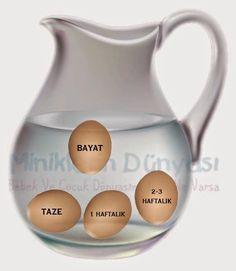 Pratik Bilgiler: Taze Yumurtalar