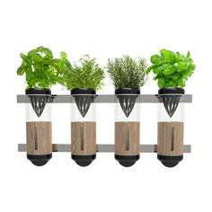 1000 Images About Mini Hydroponics On Pinterest Hydroponics Hydroponic Systems And Vertical