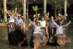 Elephant Safari Park, Taro, Ubud