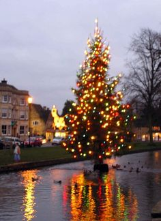 River Christmas tree in Bourton on the Water, Gloucestershire.