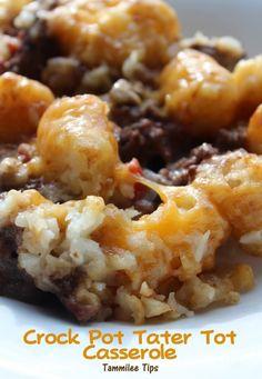 @Aubrey Godden Godden Godden Collett Crock Pot Tater Tot Casserole Recipe- Tammilee Tips