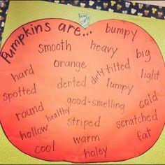 Simply Second Grade: Pumpkins! {Pick up your pumpkin glyph!}