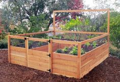 "Fenced Raised Garden Bed Kit - 8'x8' . $1115.00. Made in the USA of 1-1/4"" thick cedar. 32"" high fencing, backed with black hardware mesh - keeps out rabbits and dogs. 20"" high growing beds - no stooping required. 5'8"" built-in trellis with 4""x4"" reach-through netting. Complete fenced garden kit includes everything you need to build the ultimate vegetable garden.  For more information, visit the website for GardensToGro."