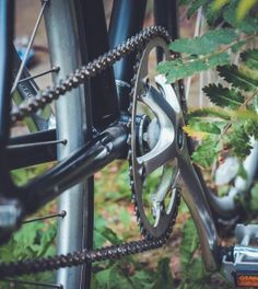 How To Generate Free Electricity With A Bicycle, And An Alternator. Here's a fresh look and an old idea.  http://www.thegoodsurvivalist.com/heres-how-to-generate-free-electricity-with-a-bicycle-and-an-alternator/