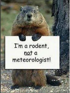 Groundhog Day -- I am a rodent, NOT a meteorologist. Groundhog's day humor