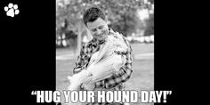 """""""Hug Your Hound Day"""" encourages dog parents and owners to focus on their dogs' health, safety and happiness! So go out to your local park and give your dog their favorite treats, it's their day! Zen Master, Save A Dog, Love You Unconditionally, Local Parks, Hug You, Make It Through, Four Legged, Puppy Love, Funny Things"""