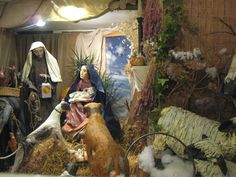 Life size Nativity in living room