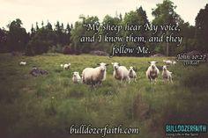 Yeshua is our Shepherd