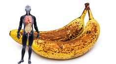 Das passiert, wenn du einen Monat lang jeden Tag zwei reife Bananen mit dunklen Flecken isst